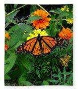 A Monarchs Colors Fleece Blanket