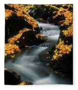A Mountain Stream Carves A Path Fleece Blanket