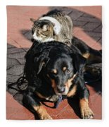 A Mouse On A Cat On A Dog In Santa Fleece Blanket