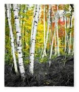 A Painting Autumn Birch Grove Fleece Blanket
