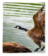A Pair Of Canada Geese Landing On Rockland Lake Fleece Blanket