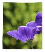 A Pair Of Purple Balloon Flowers Fleece Blanket