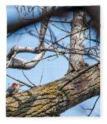 A Pair Of Red-bellied Woodpeckers Fleece Blanket