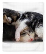 A Pile Of Pussies Fleece Blanket