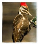 A Pileated With Intent Fleece Blanket