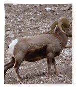 A Ram Climbing  Fleece Blanket