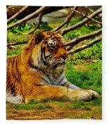 A Real Detroit Tiger Fleece Blanket