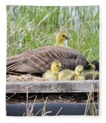 A Real Mother Goose Fleece Blanket