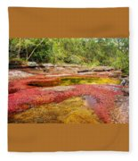 A Red And Yellow River In Colombia Fleece Blanket