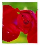 A Red Wet Rose Fleece Blanket