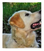 A Retriever's Loving Glance Fleece Blanket