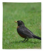 A Robin In June Fleece Blanket