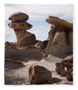 A Rock Garden Fleece Blanket