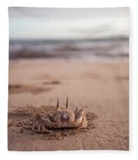 A Sand Crab Looks Out Over The Andaman Fleece Blanket