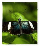 A Sara Longwing Butterfly Heliconius Fleece Blanket