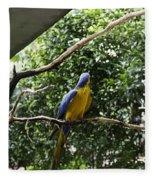 A Single Macaw Bird On A Branch Inside The Jurong Bird Park Fleece Blanket