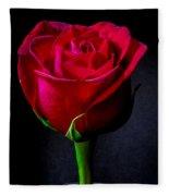 A Single Red Rose Fleece Blanket