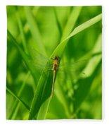A Small Dragonfly Fleece Blanket