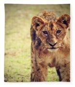 A Small Lion Cub Portrait. Tanzania Fleece Blanket