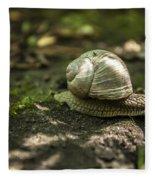 A Snail's Pace Fleece Blanket