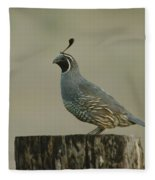 A Sole Rooster Quail Fleece Blanket