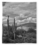 A Sonoran Winter Day In Black And White  Fleece Blanket