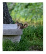 A Squirrel's Day Out Fleece Blanket