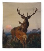A Stag With Deer In A Wooded Landscape At Sunset Fleece Blanket