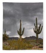 A Storm In The Sonoran Desert Fleece Blanket