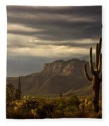 A Stormy Evening In The Superstitions  Fleece Blanket