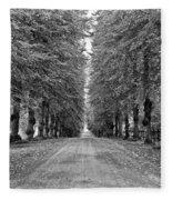 A Straightforward Path Fleece Blanket by Nancy De Flon