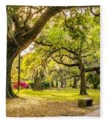 A Stroll In City Park Fleece Blanket