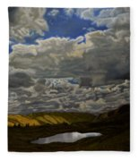 A Summer Day On Cottonwood Pass Fleece Blanket