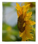 A Sunflower Profile Fleece Blanket