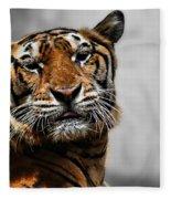 A Tiger's Look Fleece Blanket