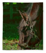 A Time To Eat Fleece Blanket