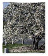A Tree In Arlington Fleece Blanket