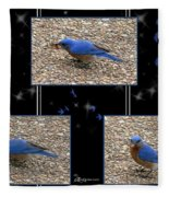 A Typical Eastern Bluebird's Lunch - Featured In Comfortable Art Group Fleece Blanket