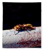 A Vespid Wasp  Fleece Blanket