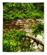 A View Of Eagle Creek Fleece Blanket
