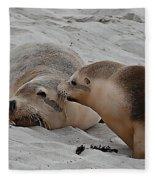A Wake Up Kiss Fleece Blanket