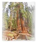 A Walk Among The Giant Sequoias Fleece Blanket