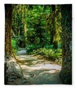 Pathway Cathedral Grove Fleece Blanket