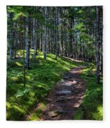 A Walk In The Woods Fleece Blanket