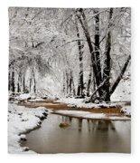 A Winter Walk  Fleece Blanket