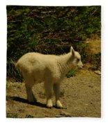 A Young Mountain Goat Fleece Blanket