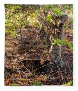 Abandoned Bench Fleece Blanket
