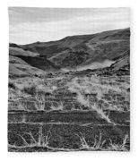 Abandoned Highway - Yakima County - Washington Fleece Blanket