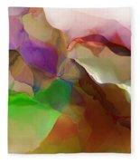 Abstract 030213 Fleece Blanket