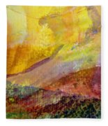Abstract No. 3 Fleece Blanket